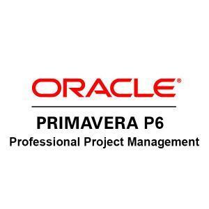 Primavera-P6-Professional-Project-Management